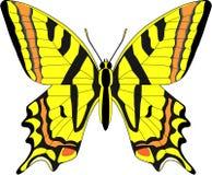 Motyl obraz stock