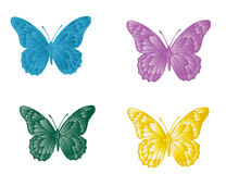 Motyl Obrazy Royalty Free