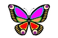 Motyl Ilustracja Wektor