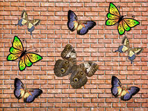 Motyl & cegła fotografia stock