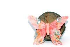 Motyl i koks Fotografia Stock