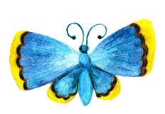 Motyl jest błękitny z żółtymi końcówkami skrzydła Nakreślenie z barwionymi ołówkami od ręki Raster wizerunek Obraz Stock