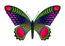 motyl kolorowe Zdjęcie Stock