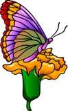 Motyl na kwiacie Fotografia Stock
