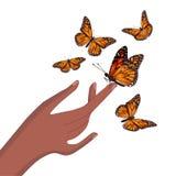 Motyl siedzi na ręka odizolowywającym wektorowym wizerunku ilustracja wektor