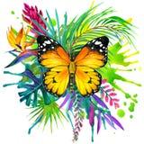 Motyl, tropikalni liście i egzotyczny kwiat, ilustracja wektor