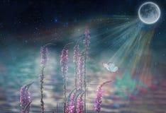 Motyl w kwiacie przy nocą w olśniewającym blask księżyca na naturze w błękicie i purpurowych brzmieniach makro-, Bajecznie magicz zdjęcie royalty free