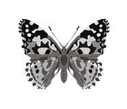 Motyl w szarość tatuażu stylu odizolowywającym na białym tle również zwrócić corel ilustracji wektora ilustracja wektor