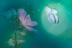 Motyl w trawie na łące przy nocą w olśniewającym blask księżyca na naturze w błękicie i purpurowych brzmieniach makro-, magiczny  obrazy royalty free