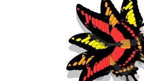 Motyl z czerni skrzydłami, czerwień wzory royalty ilustracja
