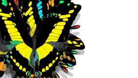 Motyl z czerni skrzydłami, kolorów żółtych wzory royalty ilustracja