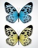motyla błękitny kolor żółty Zdjęcia Stock