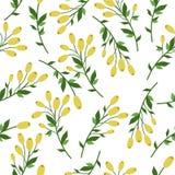 motyla opadowy kwiecisty kwiatów serca wzoru kolor żółty ilustracja wektor
