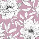 motyla opadowy kwiecisty kwiat ilustracji