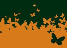 motyla papierowa szablonu ściana Fotografia Stock