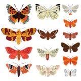 Motyla set Zdjęcia Stock
