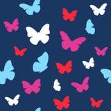 Motyla wzór Obraz Stock