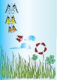 Motyle Zdjęcie Stock