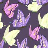 motyle deseniują bezszwowego ilustracja wektor