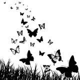 Motyle i trawy tło Obraz Royalty Free