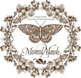 Motyle. Kartka z pozdrowieniami. Piękna rama. Obraz Stock