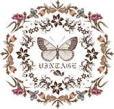 Motyle. Kartka z pozdrowieniami. Piękna rama. Zdjęcie Royalty Free