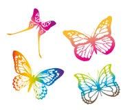 motyle kolor Fotografia Stock