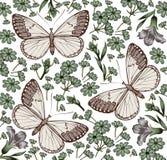 Motyle. Kwiaty. Piękny tło. Obrazy Stock