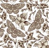 Motyle. Kwiaty. Piękny tło. Obraz Stock