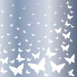Motyle latają niebo Fotografia Stock
