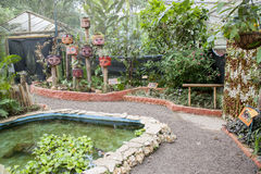 Motyle w ekologicznej oazie Obrazy Royalty Free