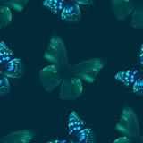 Motyli bezszwowy 00 czerń Obraz Royalty Free