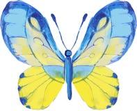 Motyli kurenda wzór na kwiecistym tle ilustracji