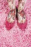 Motyli śmieszni buty z skarpetami niezwykle Zdjęcia Stock