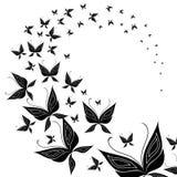 motyli mrowie Obrazy Stock