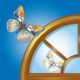 motyli okno Fotografia Royalty Free