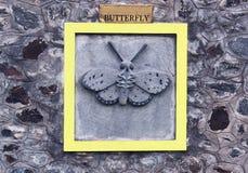 Motyli rytownictwo Obrazy Stock