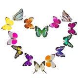 Motyli serce Zdjęcie Stock