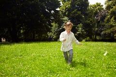 motyli target2264_1_ zdjęcie royalty free