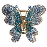 motylia biżuteria Zdjęcie Stock