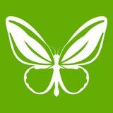 Motylia ikony zieleń Obraz Stock