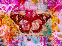motylia ilustracja Fotografia Royalty Free