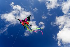 motylia latawiec Fotografia Stock