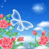 motylie róże Obraz Royalty Free