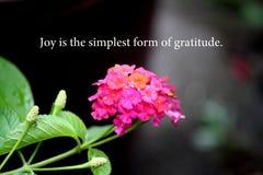 Motywacji słowa z kwiatu tłem fotografia royalty free