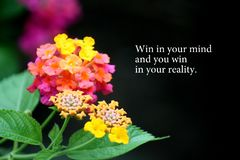 Motywacji słowa z kwiatu tłem zdjęcia stock