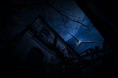 Mouche d'oiseau de mouette au-dessus de vieille barrière, château grunge, arbre mort, lune Image libre de droits