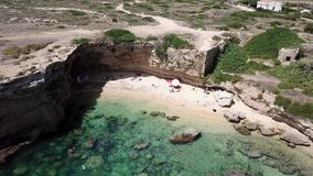 Mouche de bourdon au-dessus d'une plage sablonneuse avec la mer bleue clips vidéos