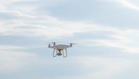 Mouche de bourdon dans le ciel Photo libre de droits