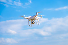 Mouche de bourdon dans le ciel Photographie stock libre de droits